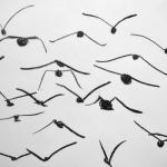 Birds 1, 2011