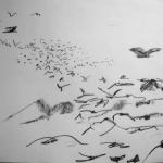 Birds 2, 2011
