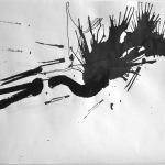 Bird 5, 2011