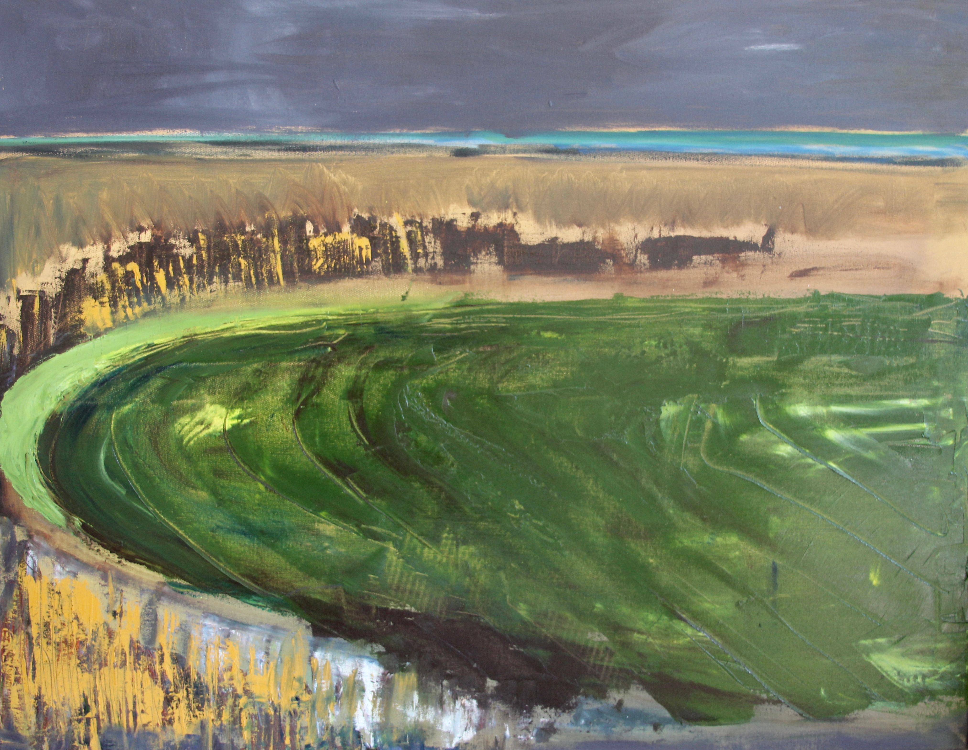 Ford Marsh 2017 Oil on canvas (90 x 70cm)