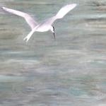 Tern 2015 Oil on canvas (84 x 59cm).jpg