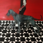 Heel 2014 Oil on canvas (50 x 70cm).jpg