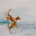 Splash 2015 Oil on Canvas (43 x 54cm).jpg